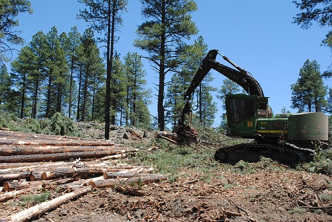 Picture of Thinning logging in Arizona. Photo courtesy USDA Forest Service